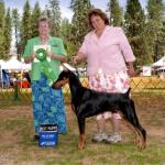 Best Puppy:  Foxfire's Take'n It Too The Max Owned By William & Janet Beauchamp & Michelle Santana