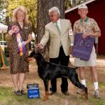 Best Of Breed:  Ch. Marienburg's Inaqui Sukiyaki Owned By Mary Rodgers & Jo-Ann Kusumoto