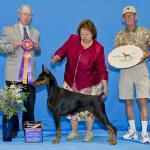 Best of Breed: GCh. Catawba's Take No Prisoners CD